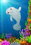 Illustration of under the sea. Illustration of manatee under the sea Stock Photography