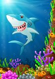 Illustration of under the sea. Illustration of shark under the sea Stock Images