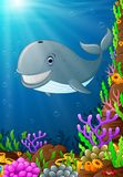 Illustration of under the sea. Illustration of whale under the sea Stock Photo