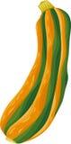 Illustration végétale de bande dessinée de courgette Photo stock