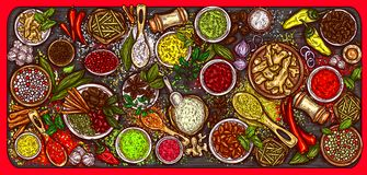 Illustration of a variety of spices and herbs on a wooden background. Top view. Template, design element Royalty Free Stock Image