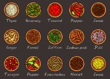 Illustration of a variety of spices and herbs in wooden bowls on a black background. Top view. Template, design element Royalty Free Stock Photo