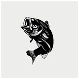 Illustration vector of fish Royalty Free Stock Images