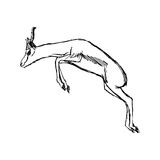 Illustration vector hand draw doodles of gazelle jumping isolate. D on white background stock photography