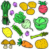 Illustration vector of vegetable object doodles Stock Image