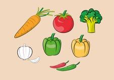 Illustration of vegetable ingredients set Stock Photography