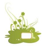 Illustration verte d'oxalide petite oseille Photographie stock libre de droits