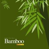 Illustration verte en bambou de vecteur Photos libres de droits