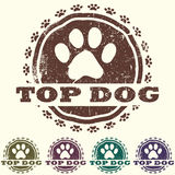 Top dog Royalty Free Stock Image