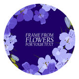 Illustration with violet flowers, delphinium. with dark circles. For your text Royalty Free Stock Image