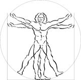 Illustration of Vitruvian Man Royalty Free Stock Photo