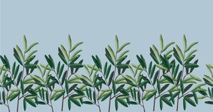 Illustration von Blättern Illustration - Olivenbäume stock abbildung