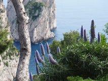 Illustration von Capri lizenzfreie stockfotos