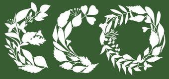 Illustration von den weißen Blättern, die Wort ECO lokalisiert auf grünem Hintergrund gestalten vektor abbildung
