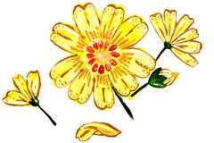 Illustration von gelben Blumen Stockfotografie