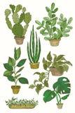 Illustration von Houseplants-, Innen- und Büroanlagen im Topf Satz der Zimmerpflanze lokalisiert Vektorskizzen-Zimmerpflanzetopf Stockfotos