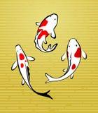 Illustration von koi Fischen Stockfotos