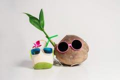 Illustration von zwei Kokosnüssen, die miteinander auf einem weißen Hintergrund sprechen Stockfotos