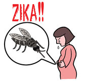 Illustration of warning of zika virus attacking pregnant mother. Through mosquito bites Royalty Free Stock Photography