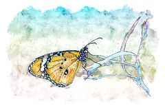 Illustration or watercolor paint of beautiful butterfly on Green. Leaf in nature stock photo