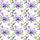 Illustration in watercolor of a pansy flower. Floral card with flowers. Botanical illustration seamless pattern. Royalty Free Stock Images
