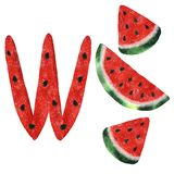 Illustration with watercolor watermelon royalty free illustration