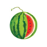 Illustration of a watermelon Royalty Free Stock Photos