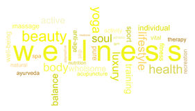 Illustration wellness. Words interacting with the word wellness Stock Images