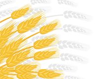 Illustration of wheat ears. Agriculture wheat. Silver silhouette wheat ears on background. Flat vector illustration