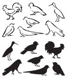 Silhouette birds sitting Royalty Free Stock Photography