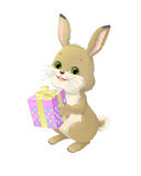 Illustration on white background of a hare, which holds the box box with a gift. Royalty Free Stock Photo