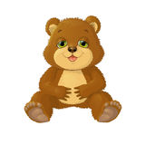 Illustration on white background sitting bear. Royalty Free Stock Image