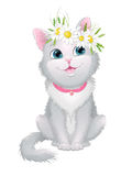Illustration on white background sitting kitty with a wreath of daisies on her head. Stock Images