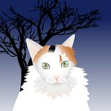 Illustration of a white cat. For your design Royalty Free Stock Images