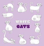 Illustration of white cats. Illustration of white funny cats on the violet background. Vector Royalty Free Stock Photography