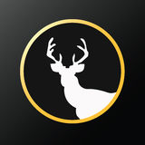 Illustration of a whitetail deer stag head looking straight insi Stock Image