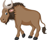 Illustration of a Wildebeest Royalty Free Stock Image