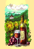 Illustration with wine. Vector illustration with wine and vineyard. Drawwing by hand. Sketch style Royalty Free Stock Photography