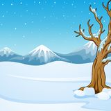 Winter mountain landscape with bare tree Stock Images