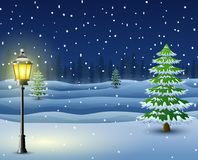 Winter night background with pine trees and street lamp. Illustration of Winter night background with pine trees and street lamp Royalty Free Stock Image