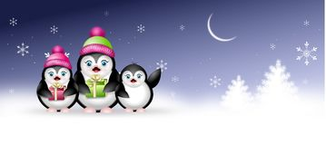 Winter web banner with penguins Royalty Free Stock Image