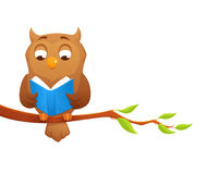 Illustration of a wise owl reading a book Royalty Free Stock Photography