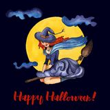 Illustration witch on a broomstick. royalty free illustration
