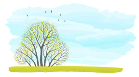 Illustration With Place For Text With A Group Of Autumn Trees Against The Sky Stock Photos