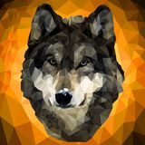 Illustration of a wolf in low-poly style. Wolf head in low-poly style on a yellow background Royalty Free Stock Images