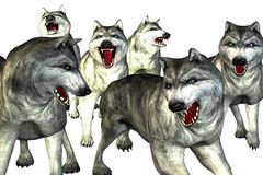 Illustration of wolves. Drawing of group of menacing wolves Royalty Free Stock Image