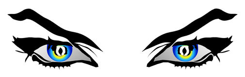 Illustration of a woman's eyes Royalty Free Stock Images