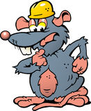 illustration of an wondering Rat with helmet Royalty Free Stock Image
