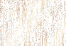Illustration of the wood grain Stock Photo
