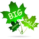 Illustration of words big spring sale Stock Photos